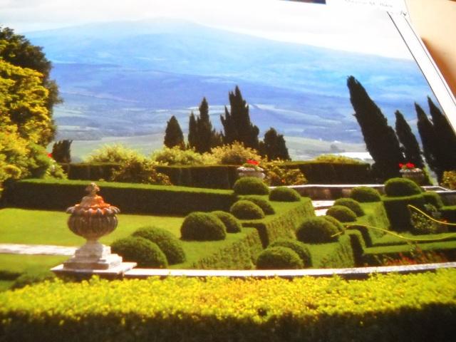 Garden-Symmetry